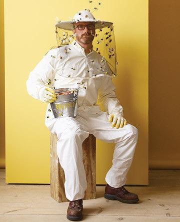 disfraces caseros apicultor