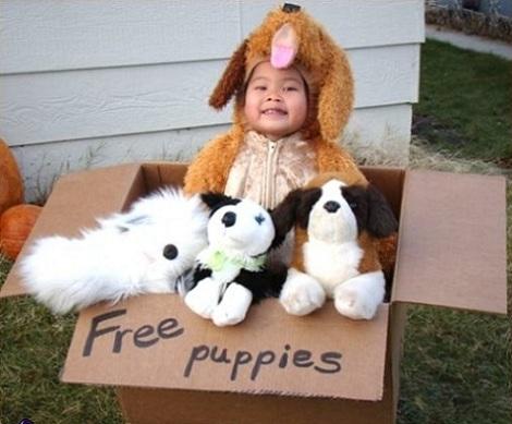 disfraces bebé originales cachorro