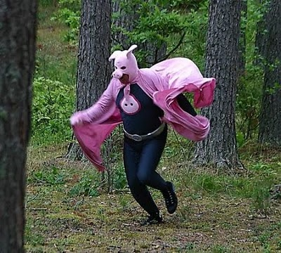 disfraces graciosos super cerdo