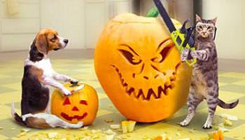 disfraces faciles hacer halloween