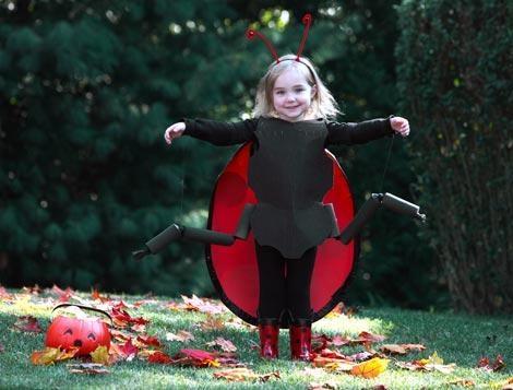 disfraces halloween niños mariquita