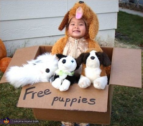 disfraz bebé casero regalo perritos