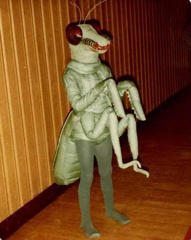 disfraz casero de mantis